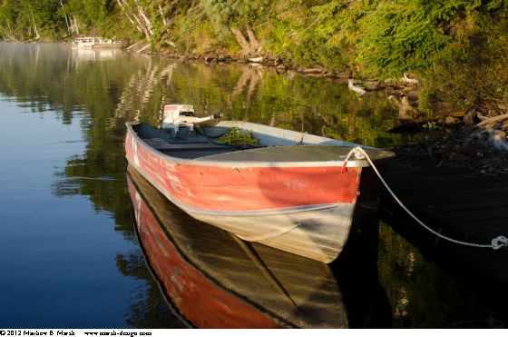 Aluminum skiff docked on a calm shore